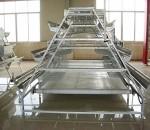 阶梯传送带式清粪自动化养鸡设备